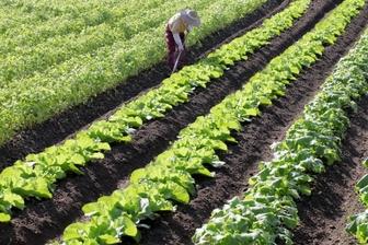 [岩手県農業公社]農業を始めたい人の相談会